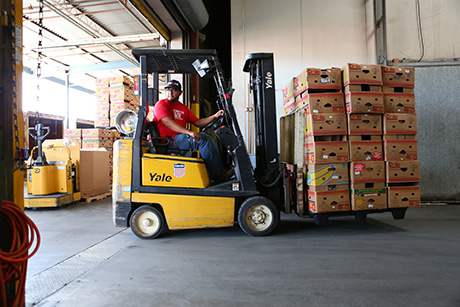 SVdP staff member operates forklift in food warehouse.