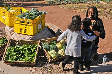 Urban Farm Nika and Kids